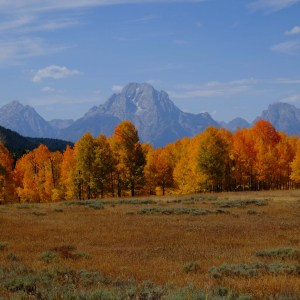 Tetons with fall colors